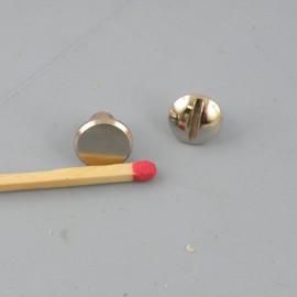 Grand Plot vis décoratif  sac maroquinerie 9 mm